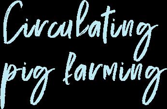 Circulating pig farming